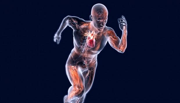 Diabete: effetti dell'esercizio sul controllo glicemico